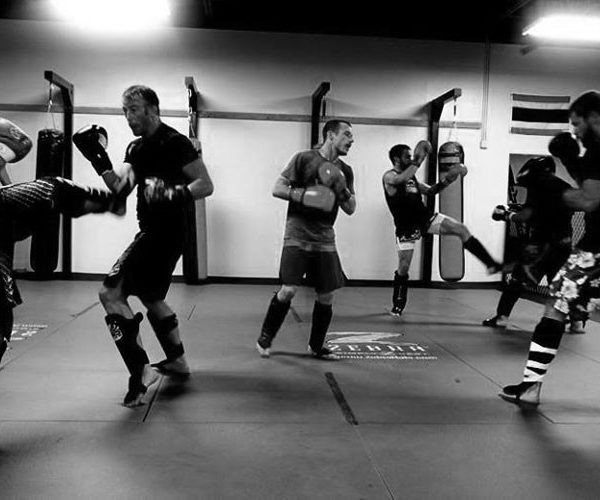 Mixed Martial Arts Training